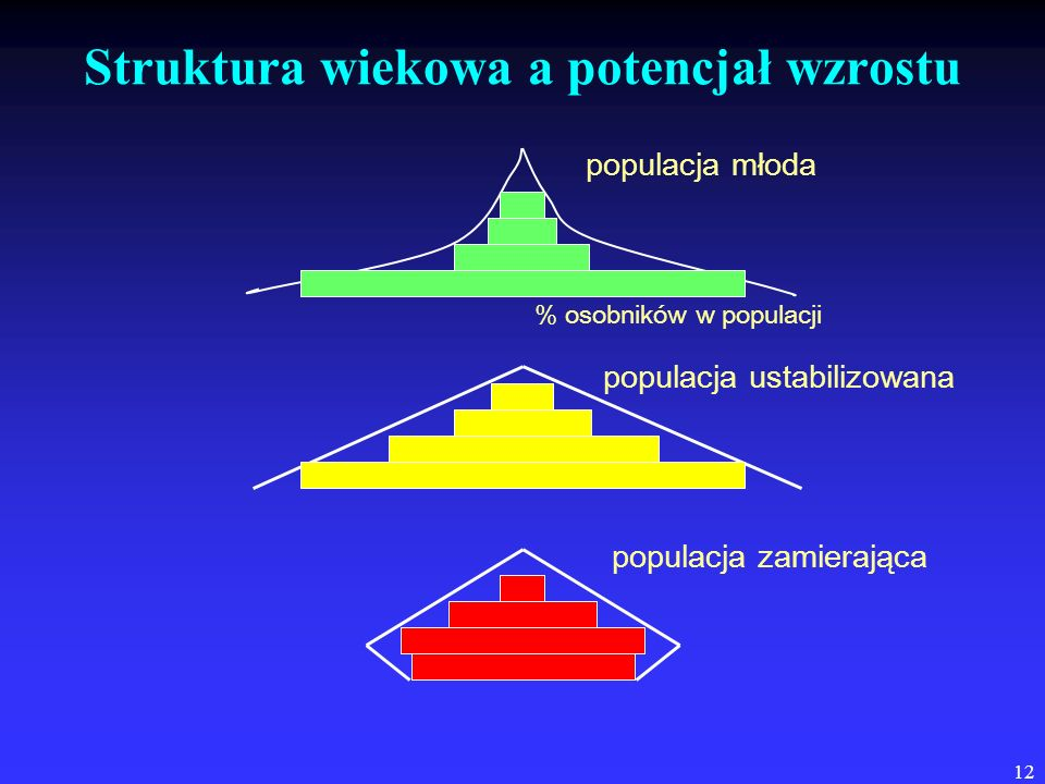 Struktura wiekowa a potencjał wzrostu