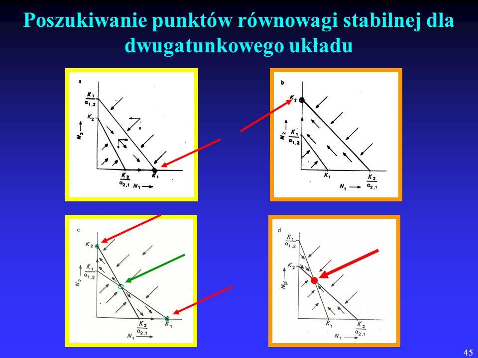 Poszukiwanie punktów równowagi stabilnej dla dwugatunkowego układu