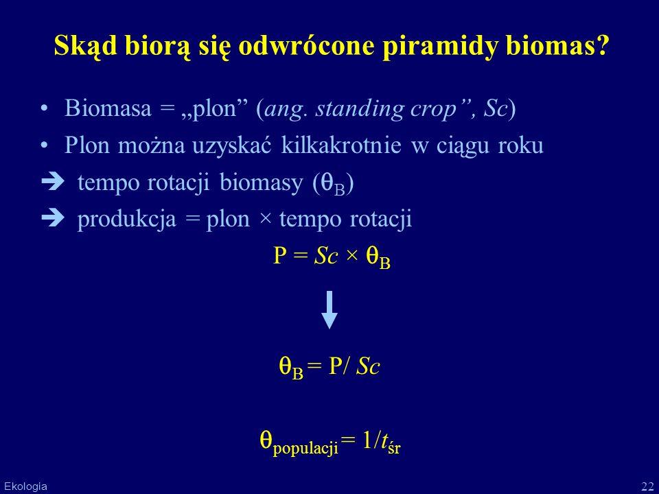 Skąd biorą się odwrócone piramidy biomas