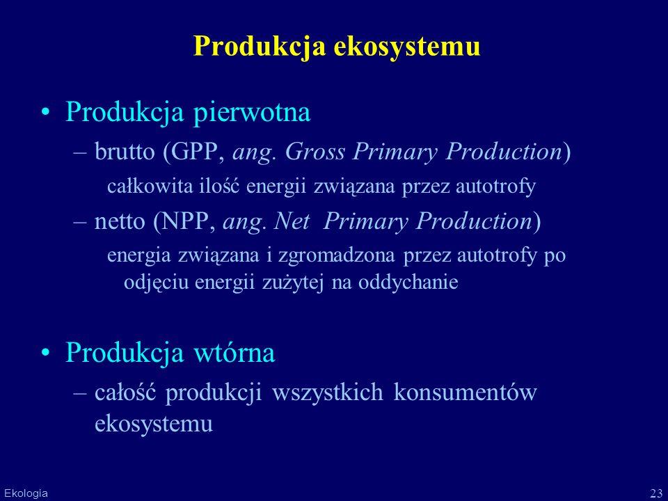 Produkcja ekosystemu Produkcja pierwotna Produkcja wtórna