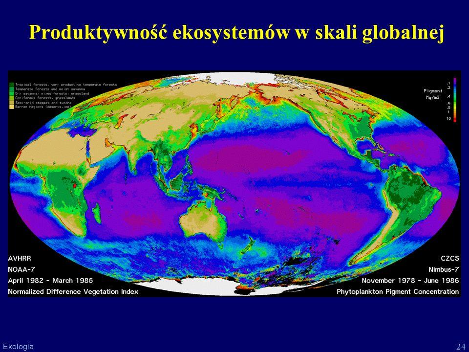 Produktywność ekosystemów w skali globalnej