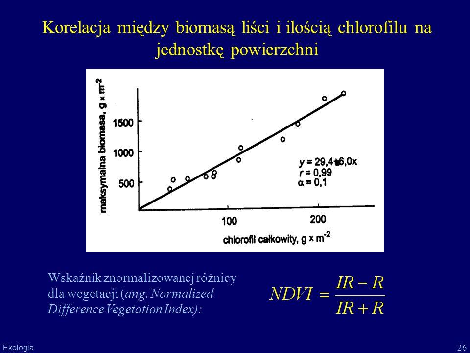 Korelacja między biomasą liści i ilością chlorofilu na jednostkę powierzchni