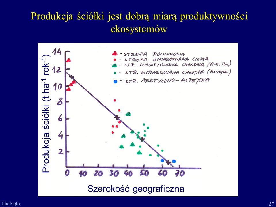 Produkcja ściółki jest dobrą miarą produktywności ekosystemów