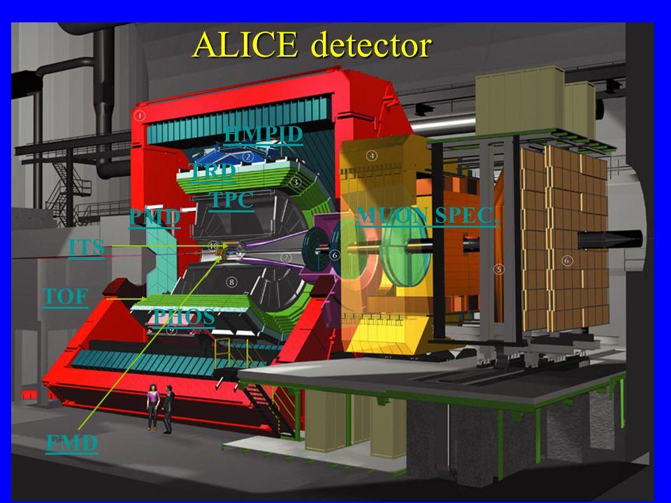 ALICE detector HMPID TRD TPC PMD MUON SPEC. ITS TOF PHOS FMD