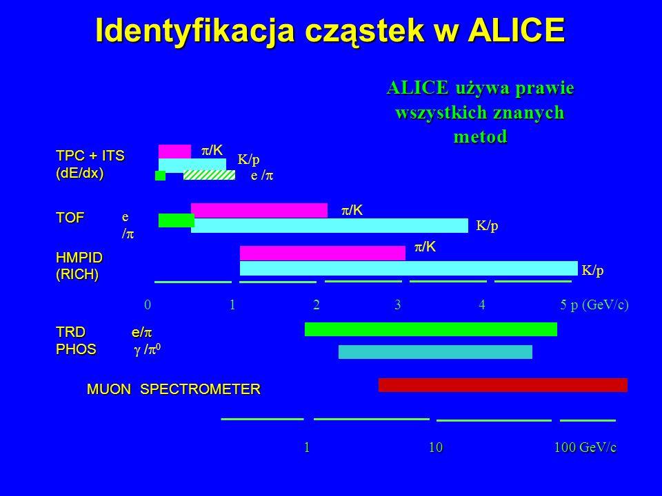 Identyfikacja cząstek w ALICE