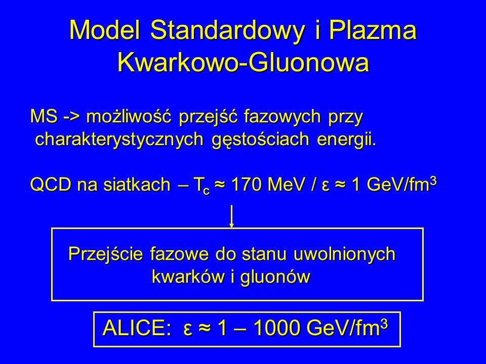 Model Standardowy i Plazma Kwarkowo-Gluonowa