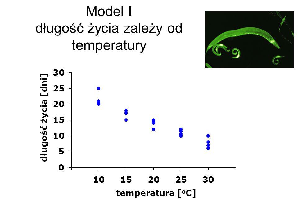 Model I długość życia zależy od temperatury