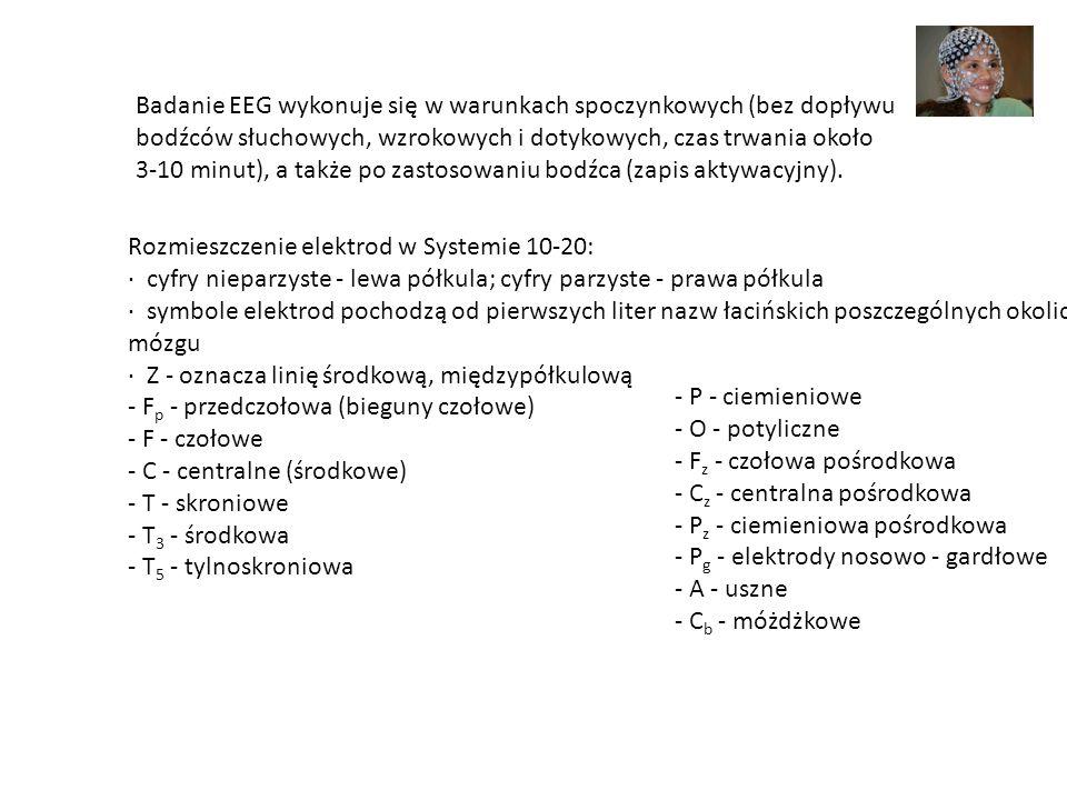 Rozmieszczenie elektrod w Systemie 10-20: