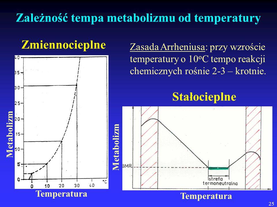 Zależność tempa metabolizmu od temperatury