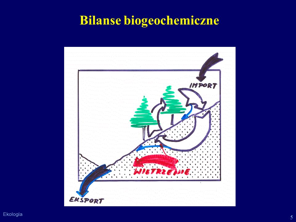 Bilanse biogeochemiczne