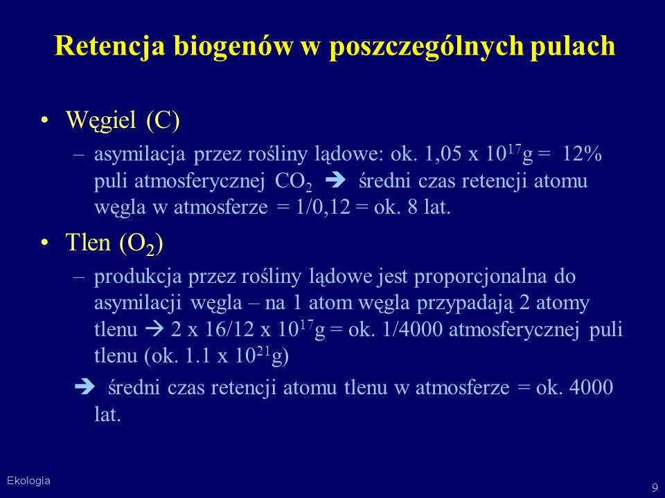 Retencja biogenów w poszczególnych pulach