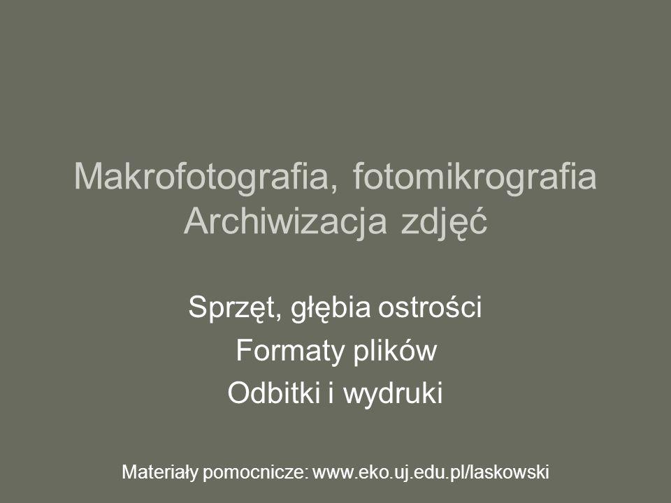 Makrofotografia, fotomikrografia Archiwizacja zdjęć