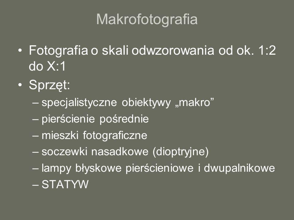 Makrofotografia Fotografia o skali odwzorowania od ok. 1:2 do X:1