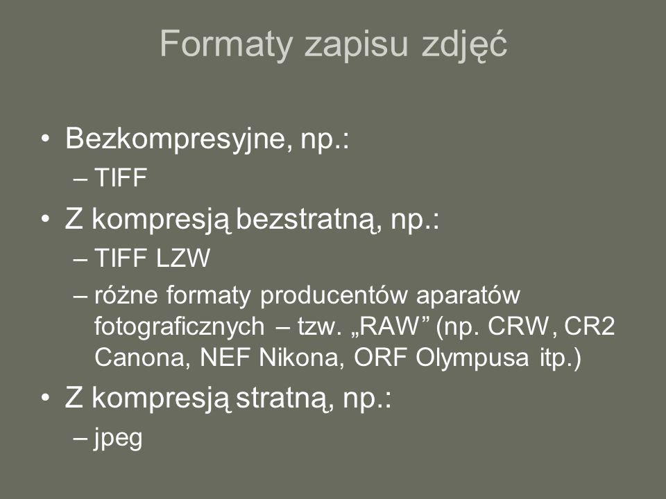 Formaty zapisu zdjęć Bezkompresyjne, np.: Z kompresją bezstratną, np.: