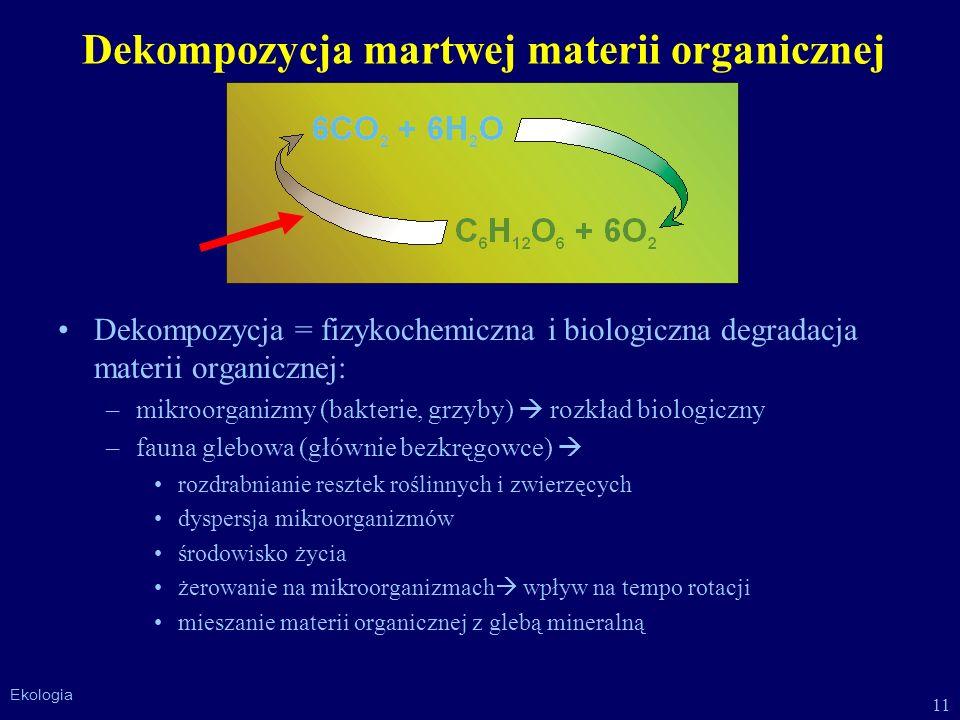 Dekompozycja martwej materii organicznej