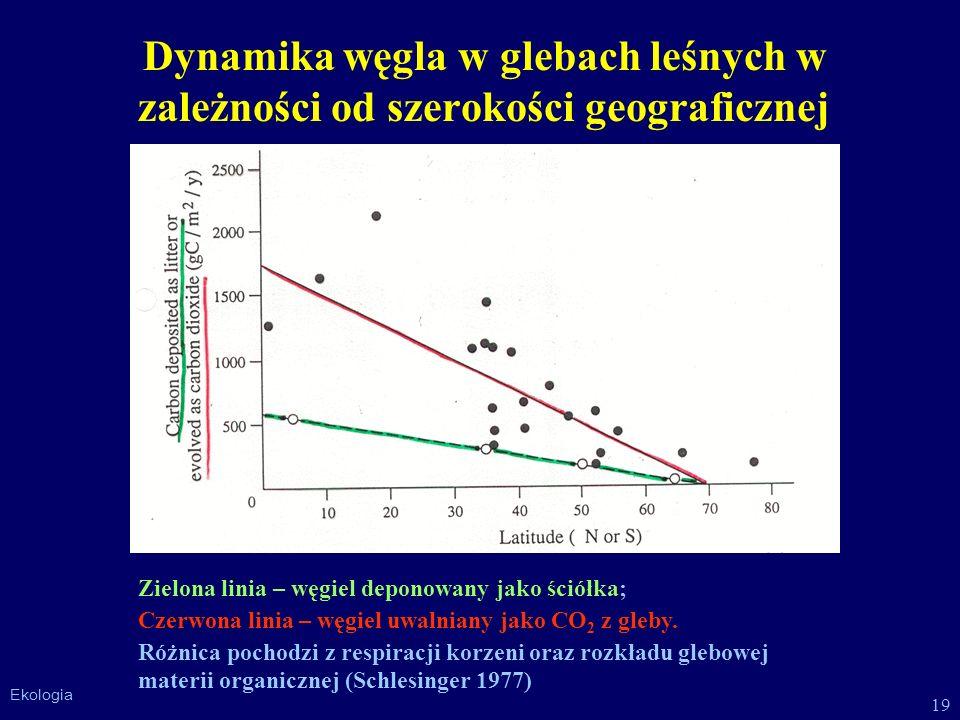 Dynamika węgla w glebach leśnych w zależności od szerokości geograficznej