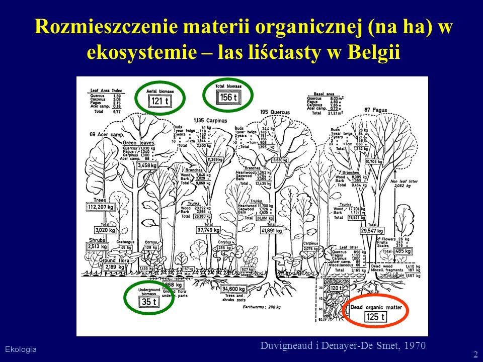 Rozmieszczenie materii organicznej (na ha) w ekosystemie – las liściasty w Belgii