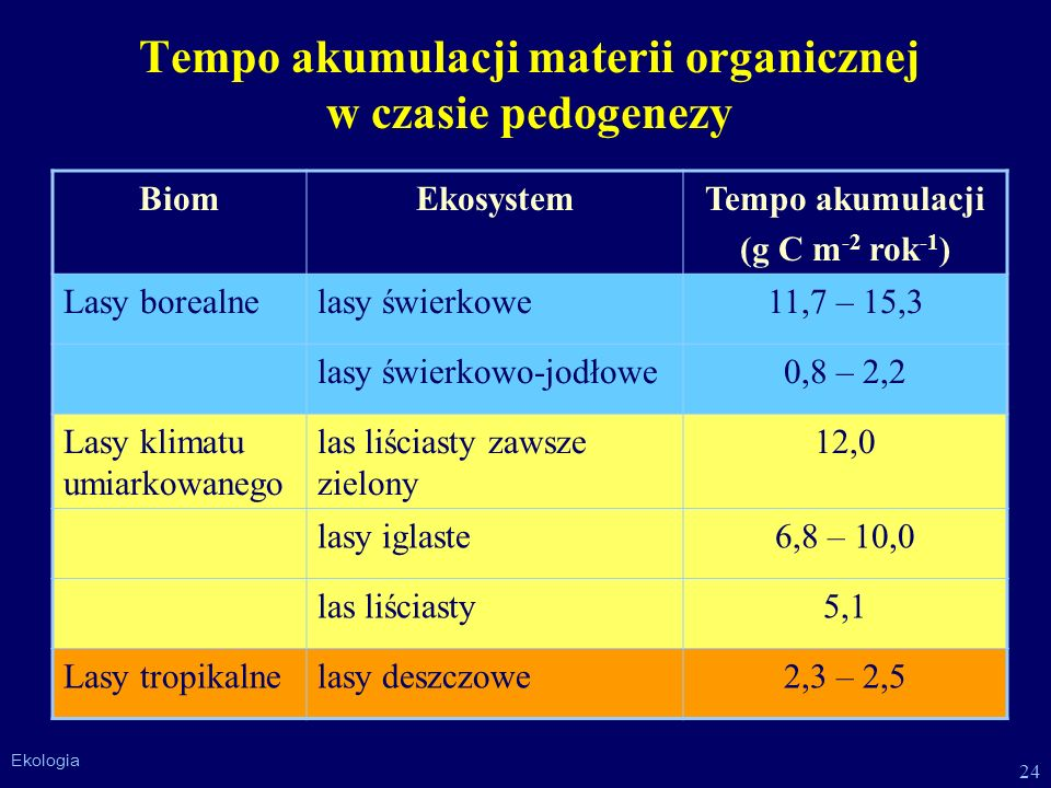 Tempo akumulacji materii organicznej w czasie pedogenezy