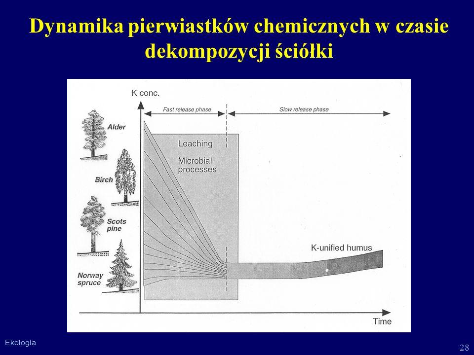 Dynamika pierwiastków chemicznych w czasie dekompozycji ściółki