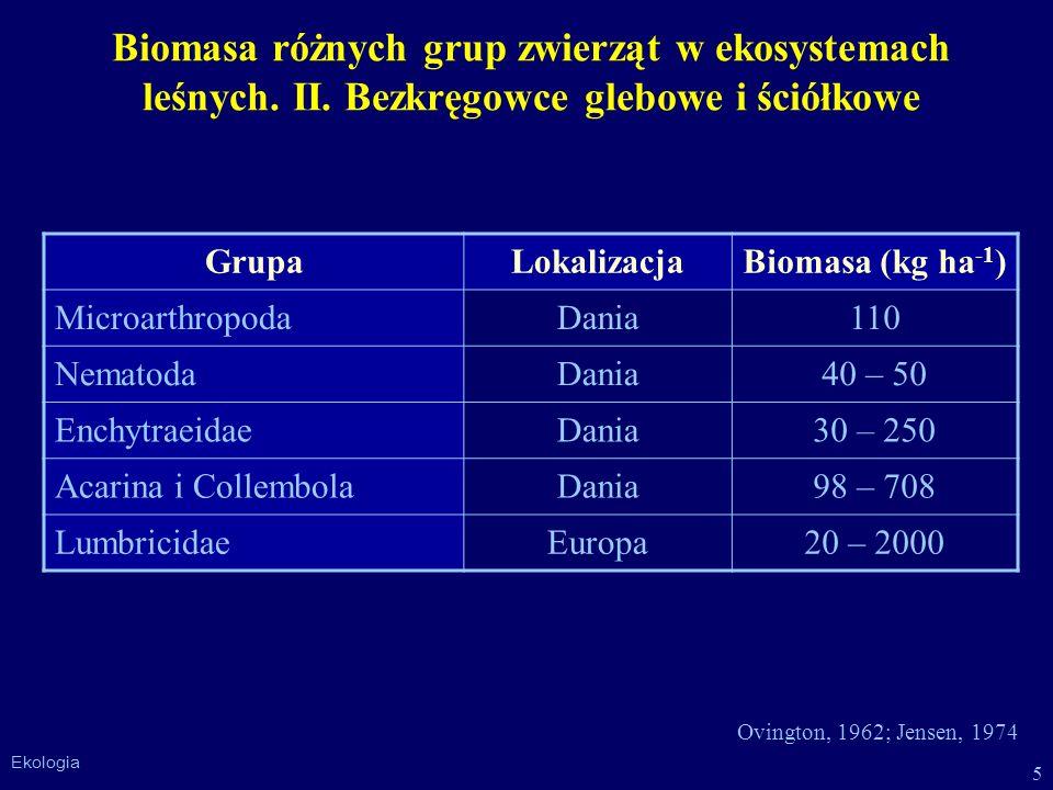 Biomasa różnych grup zwierząt w ekosystemach leśnych. II