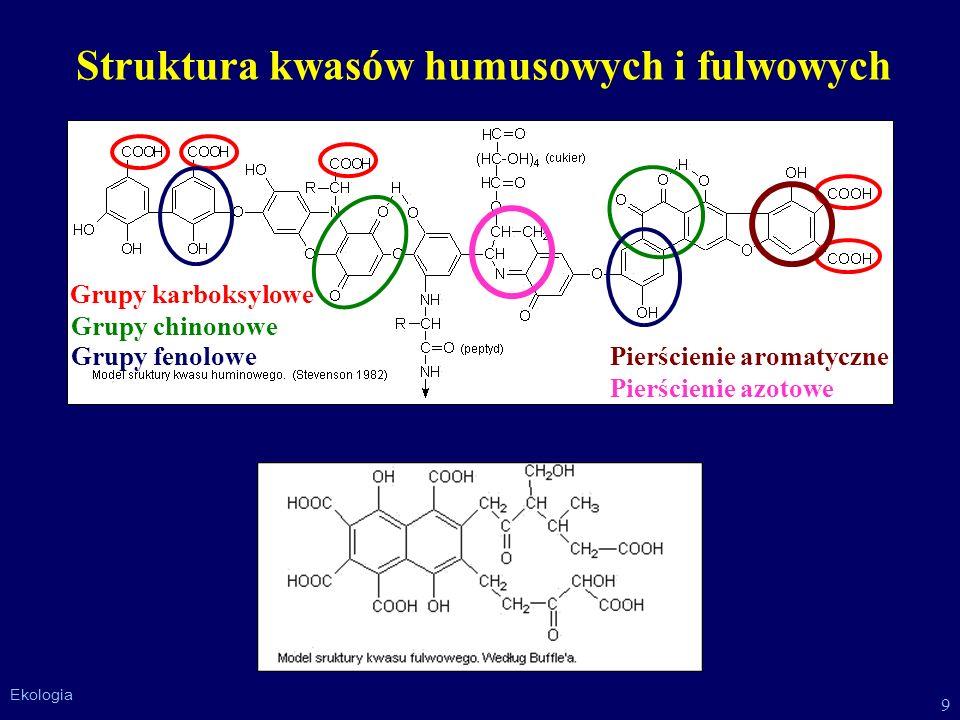 Struktura kwasów humusowych i fulwowych
