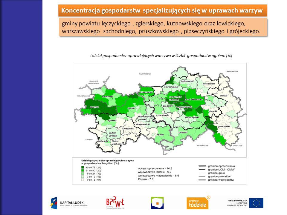 Koncentracja gospodarstw specjalizujących się w uprawach warzyw