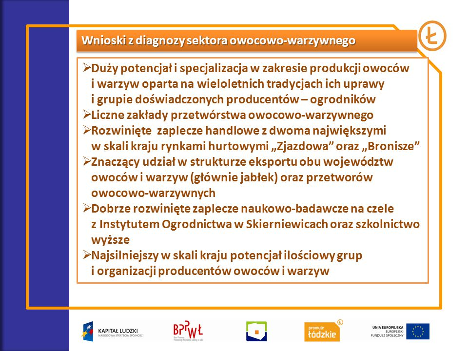 Wnioski z diagnozy sektora owocowo-warzywnego