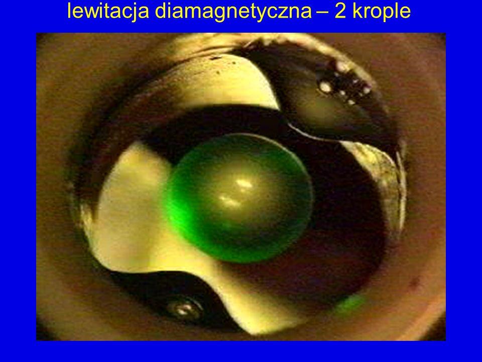 lewitacja diamagnetyczna – 2 krople