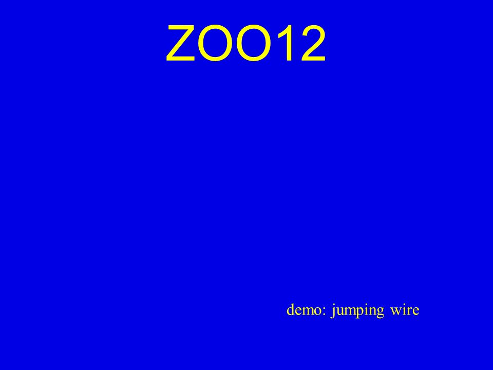 ZOO12 demo: jumping wire