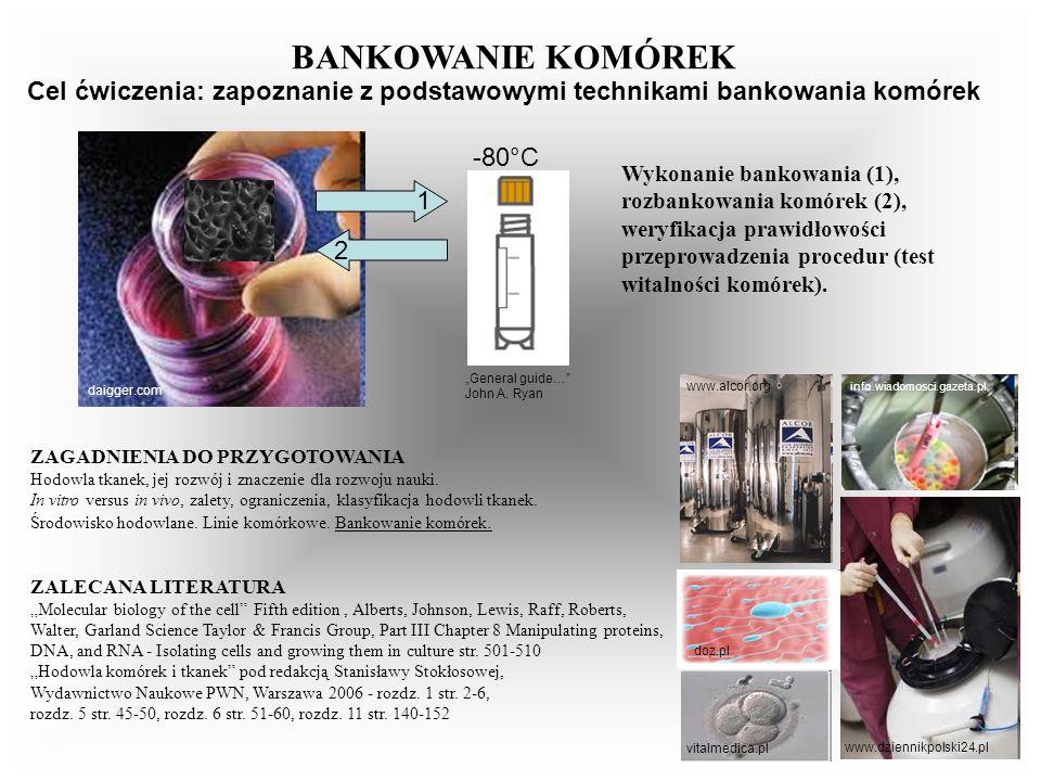 BANKOWANIE KOMÓREKCel ćwiczenia: zapoznanie z podstawowymi technikami bankowania komórek. daigger.com.