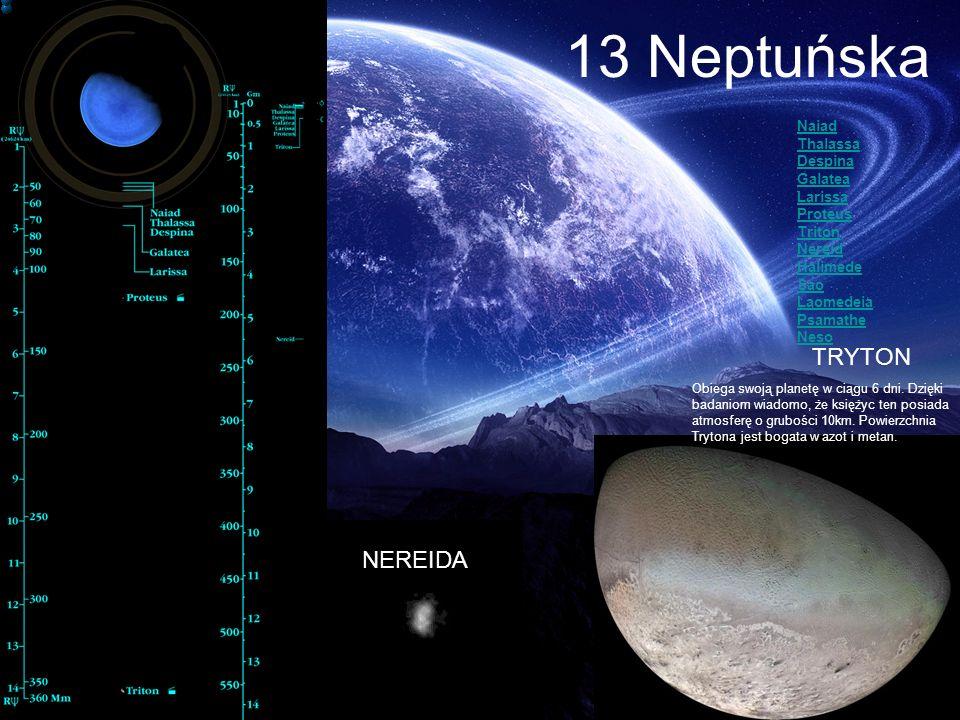 13 Neptuńska TRYTON NEREIDA