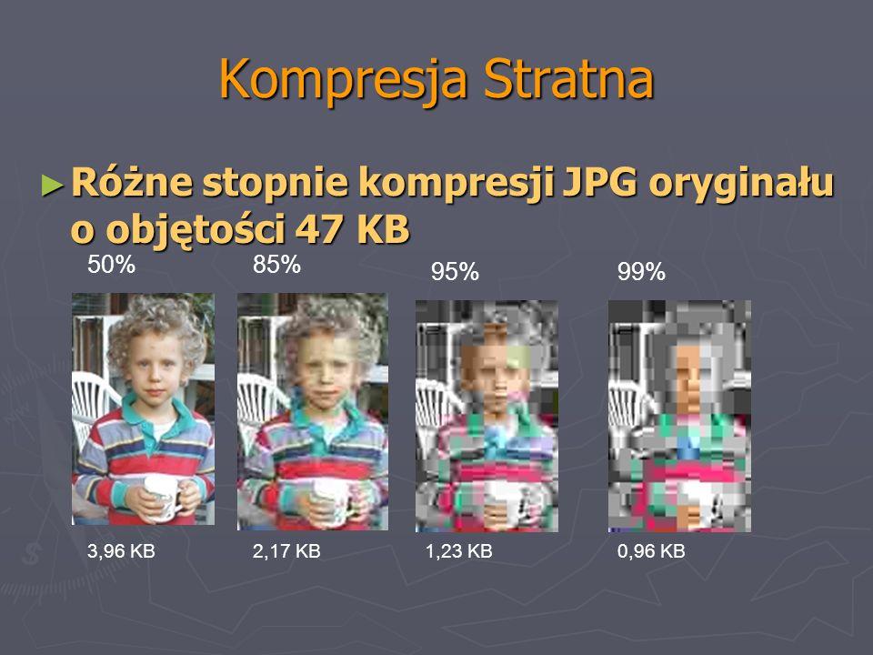 Kompresja StratnaRóżne stopnie kompresji JPG oryginału o objętości 47 KB. 50% 85% 95% 99% 3,96 KB. 2,17 KB.
