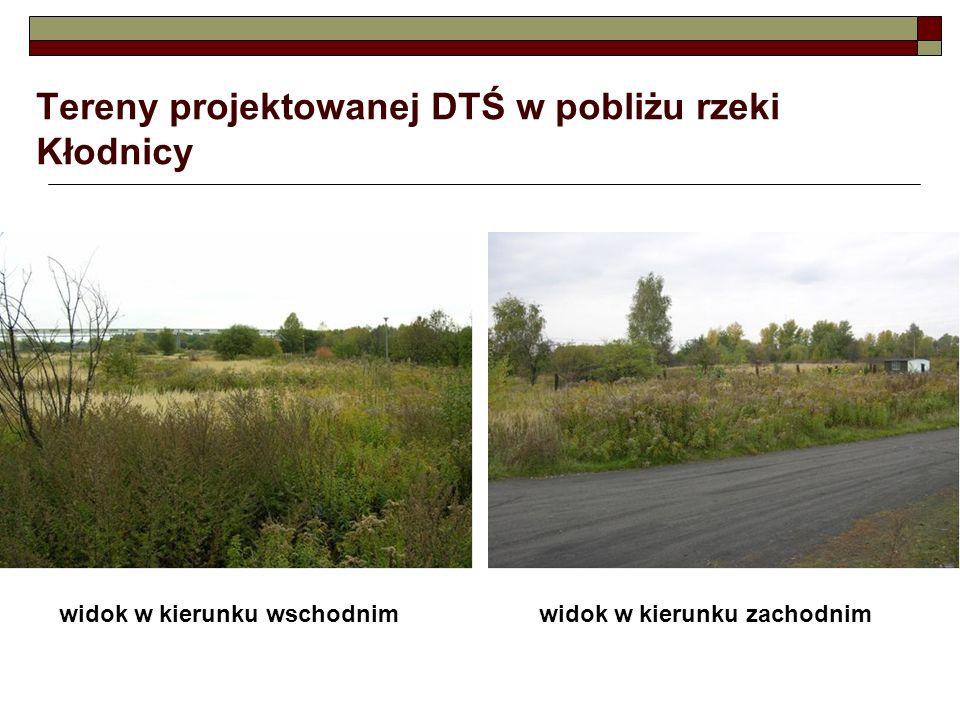 Tereny projektowanej DTŚ w pobliżu rzeki Kłodnicy