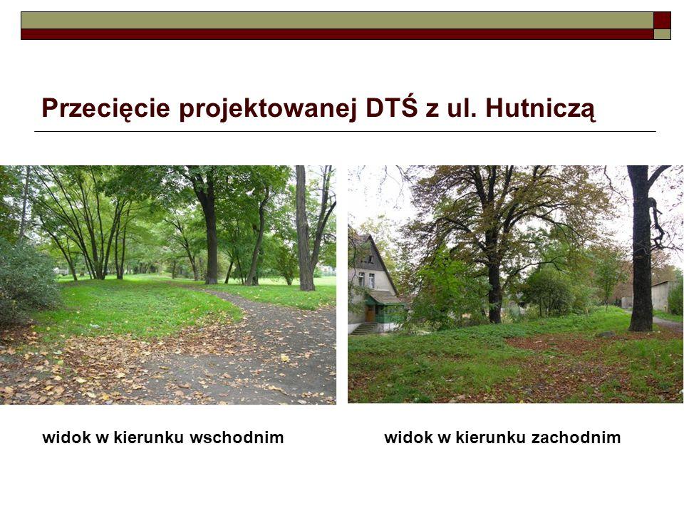 Przecięcie projektowanej DTŚ z ul. Hutniczą