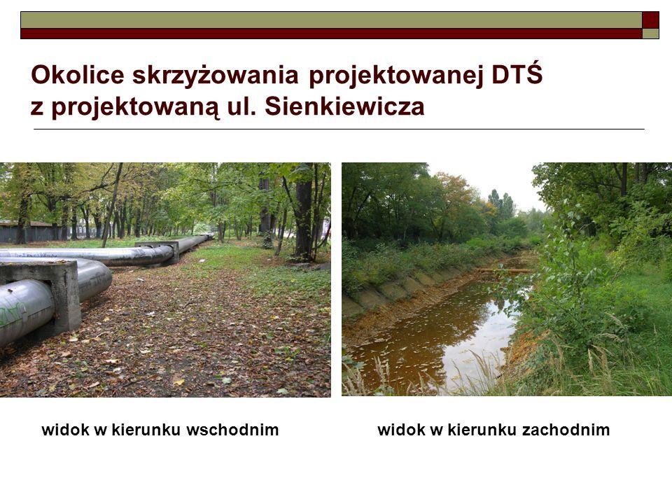Okolice skrzyżowania projektowanej DTŚ z projektowaną ul. Sienkiewicza