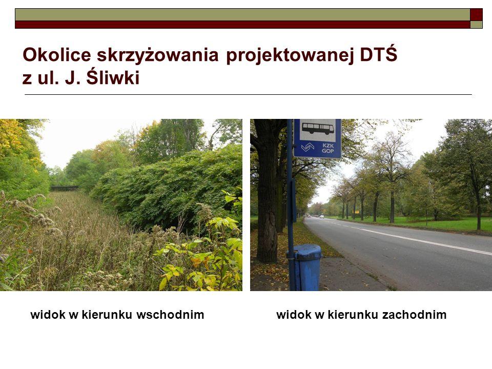 Okolice skrzyżowania projektowanej DTŚ z ul. J. Śliwki