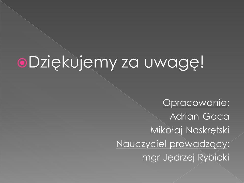 Dziękujemy za uwagę! Opracowanie: Adrian Gaca Mikołaj Naskrętski