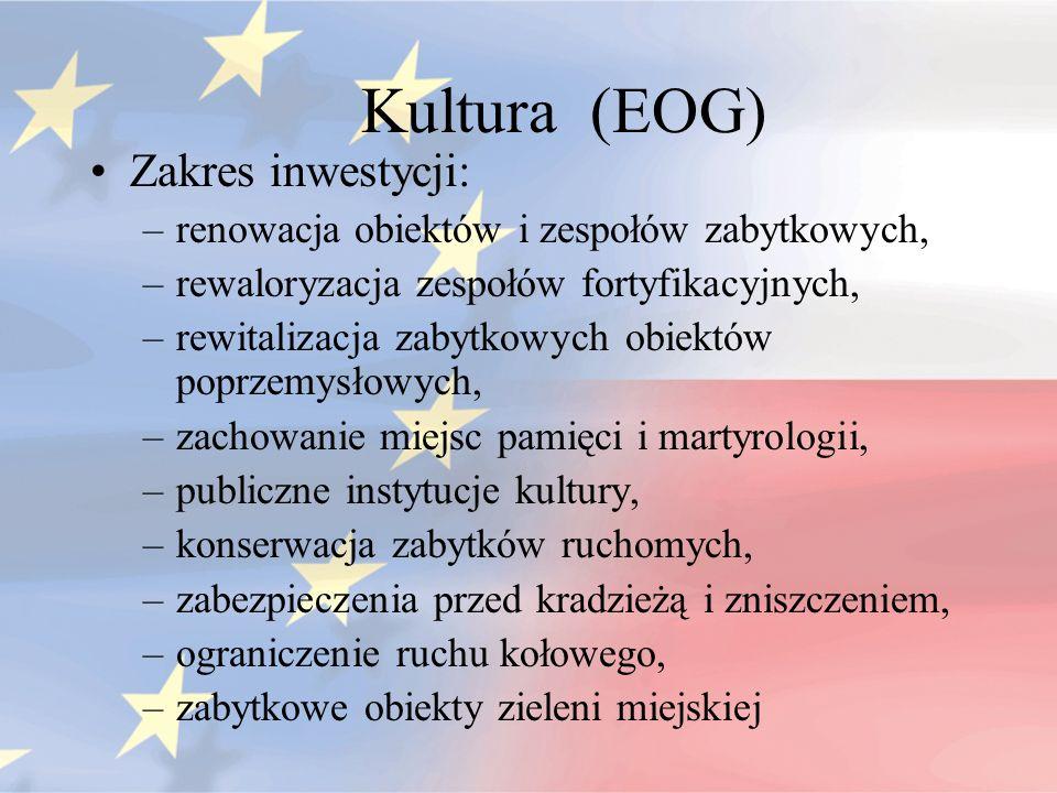 Kultura (EOG) Zakres inwestycji: