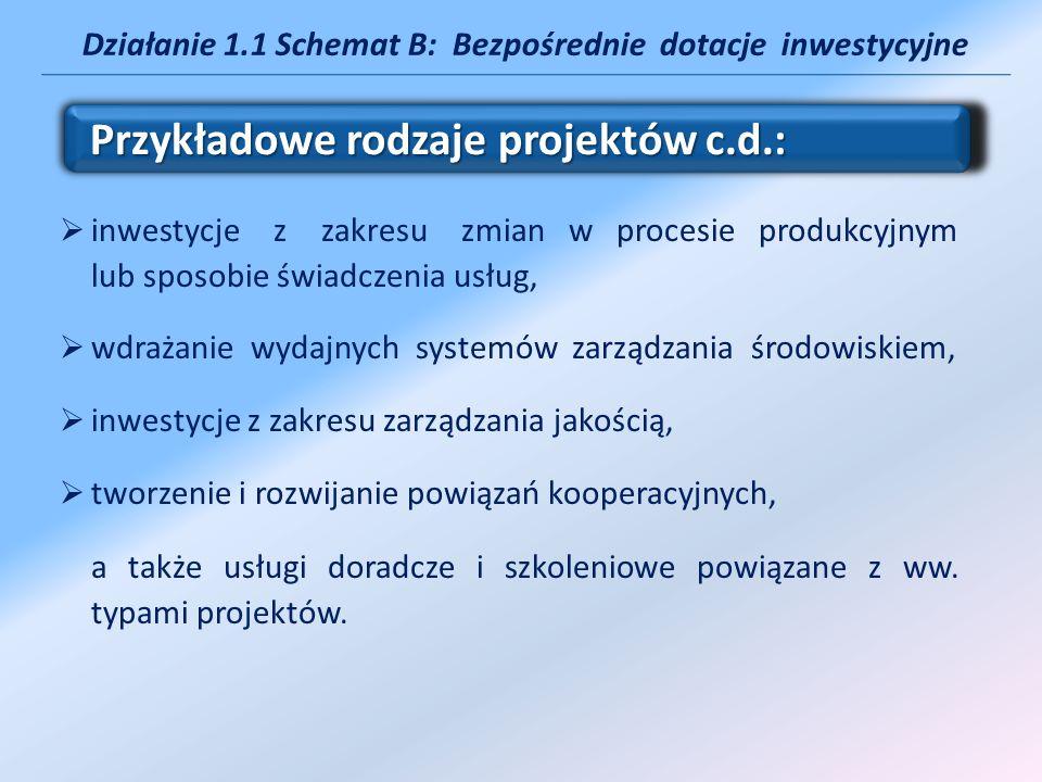 Działanie 1.1 Schemat B: Bezpośrednie dotacje inwestycyjne