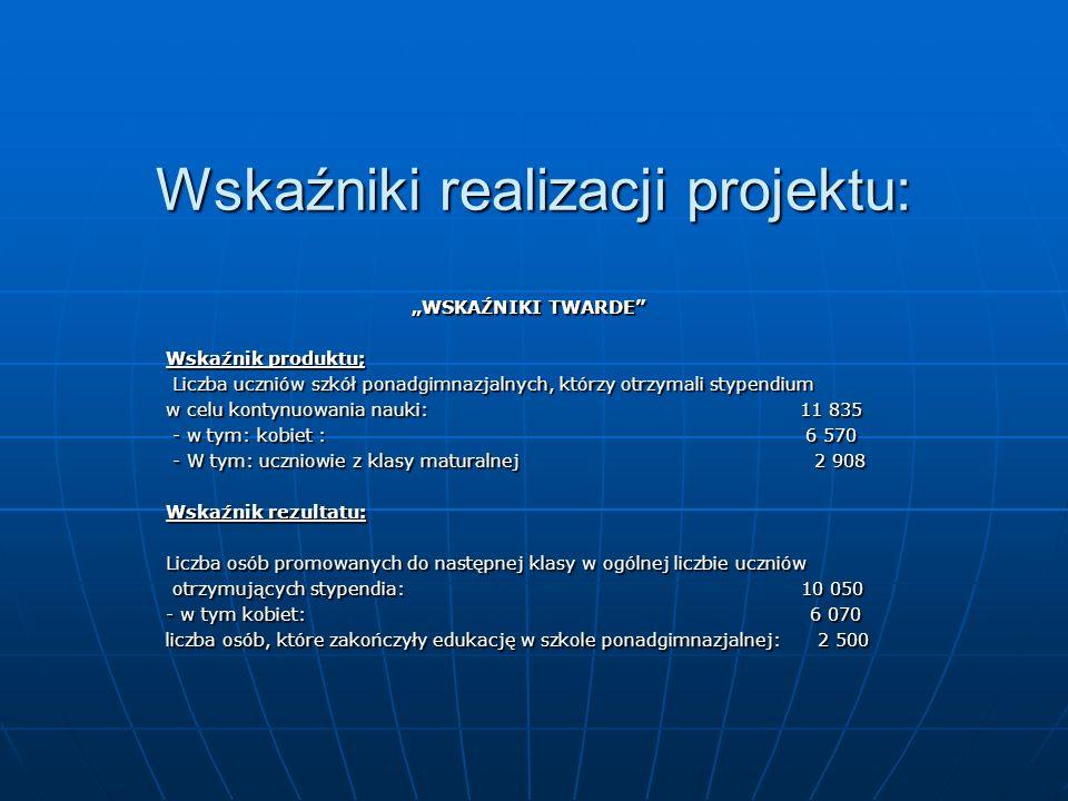 Wskaźniki realizacji projektu:
