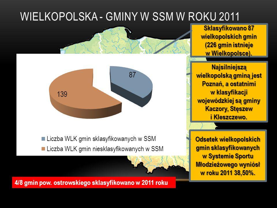 WIELKOPOLSKA - GMINY W SSM W ROKU 2011