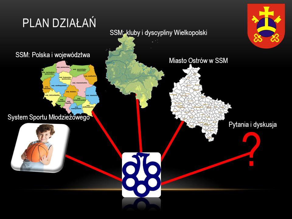 PLAN DZIAŁAŃ SSM: kluby i dyscypliny Wielkopolski