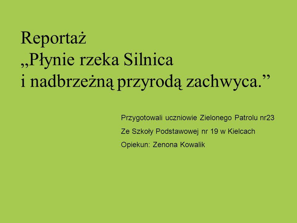 """Reportaż """"Płynie rzeka Silnica i nadbrzeżną przyrodą zachwyca."""