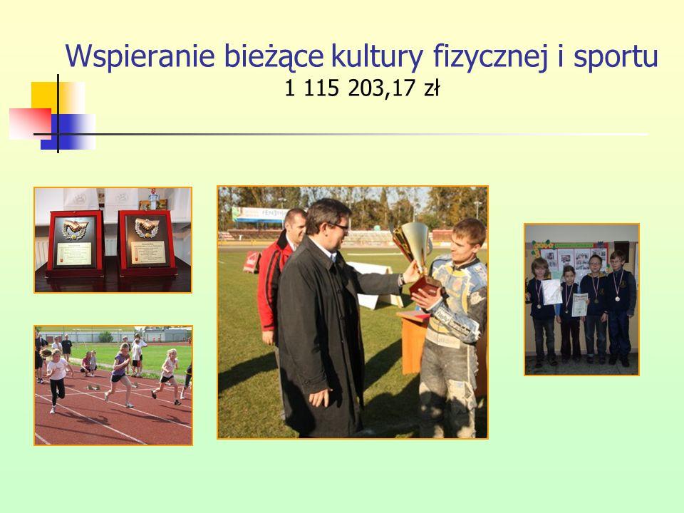 Wspieranie bieżące kultury fizycznej i sportu 1 115 203,17 zł