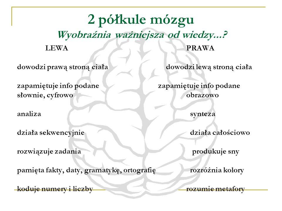 2 półkule mózgu Wyobraźnia ważniejsza od wiedzy...