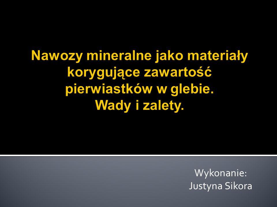 Wykonanie: Justyna Sikora