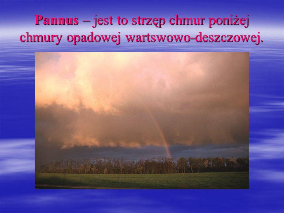 Pannus – jest to strzęp chmur poniżej chmury opadowej wartswowo-deszczowej.