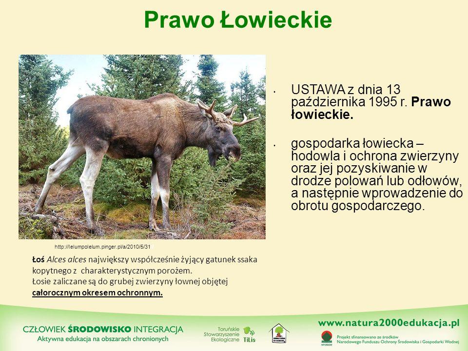 Prawo Łowieckie USTAWA z dnia 13 października 1995 r. Prawo łowieckie.