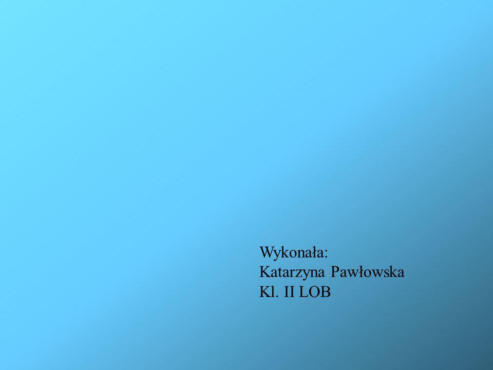 Wykonała: Katarzyna Pawłowska Kl. II LOB