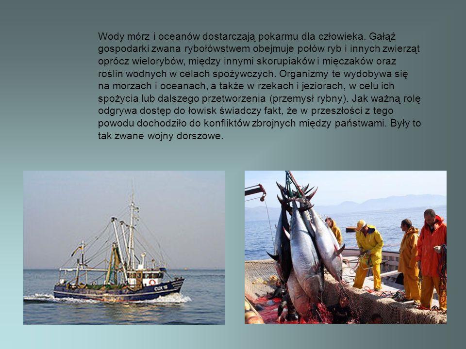 Wody mórz i oceanów dostarczają pokarmu dla człowieka